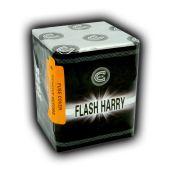 Celtic Fireworks - Flash Harry