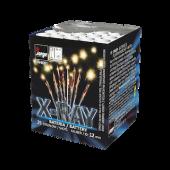 X-Ray jw4081 by Jorge